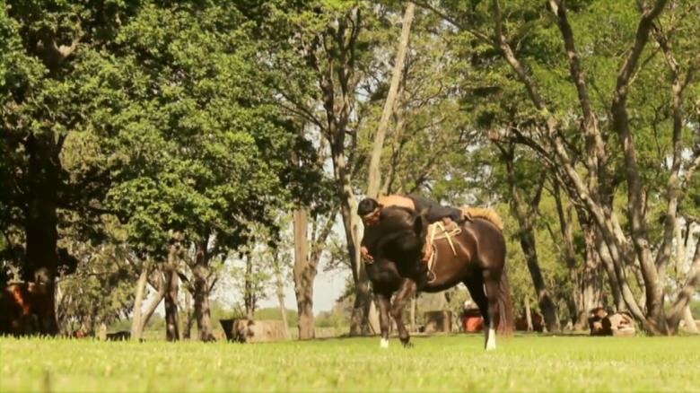 domador de caballos , indio
